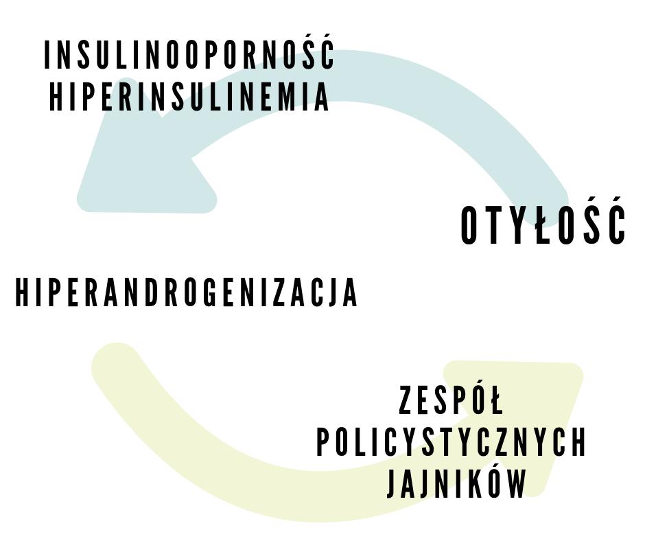 Dieta W Zespole Policystycznych Jajnikow Pcos Jadietetyk Pl