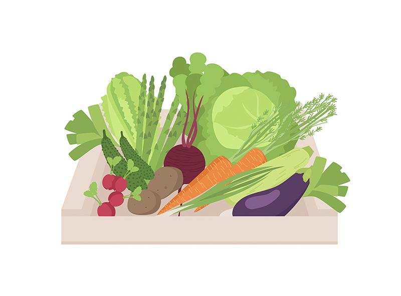 wegetariańska dieta keto ketogeniczna wege jadietetyk